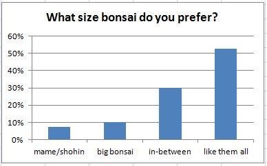 What size bonsai