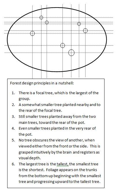 cypressforestdesign10-2-16-2