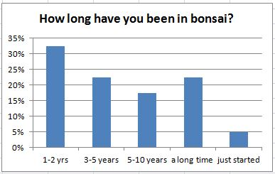 How long have you been in bonsai