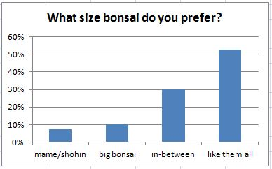 What size bonsai