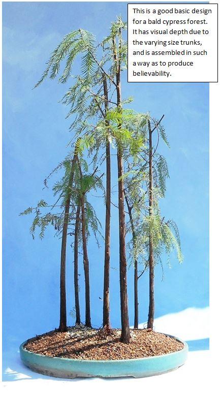 cypress10-3-16-1